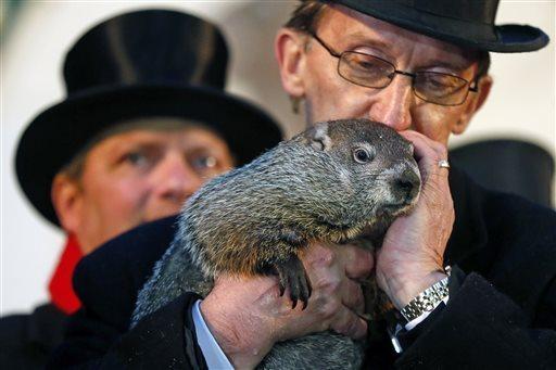 Punxsatawney Phil, de groundhog