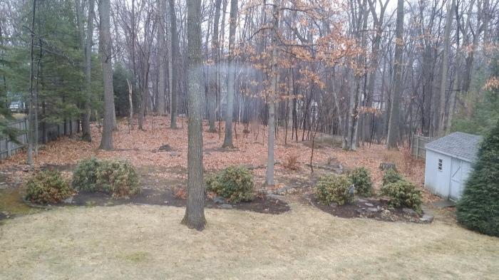 De achtertuin, en dat in de winter... en wordt dus nog beter!!