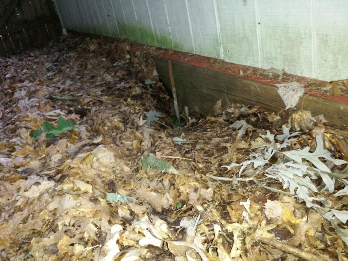 Een hol onder het huisje in de achtertuin