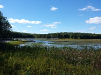 Bergmeertje in Black Moshannon State Park