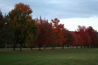 Bij Boalsburg, 5 minuten van State College