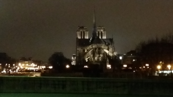 De Notre Dame van een afstandje