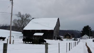 Biefstukjes in de sneeuw