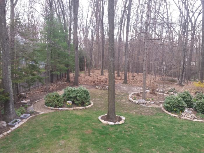 21 april. Het gras wordt groener
