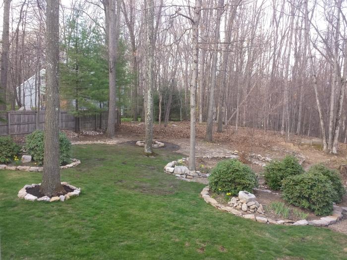 26 april. Weer wat groener gras