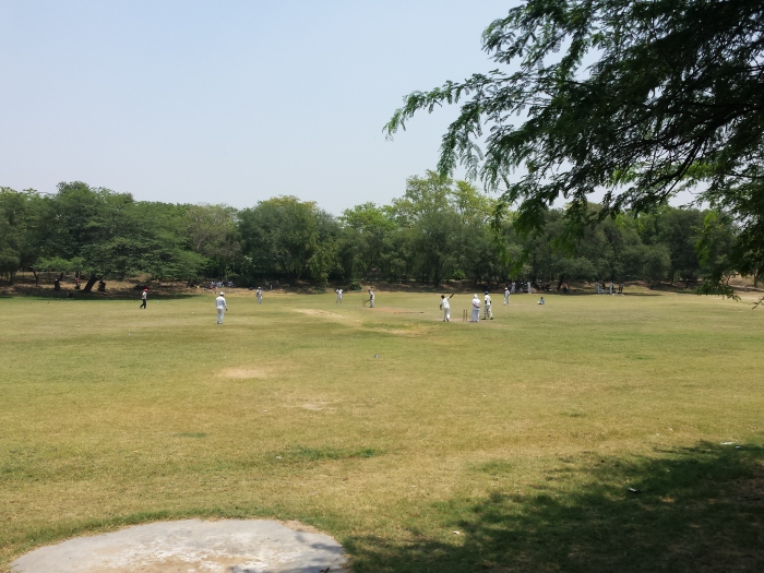 Cricket met 40 graden Celcius!