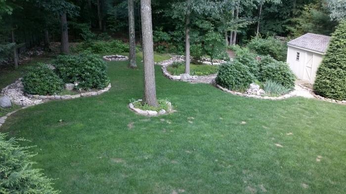 Onze achtertuin is toch nog heel erg groen