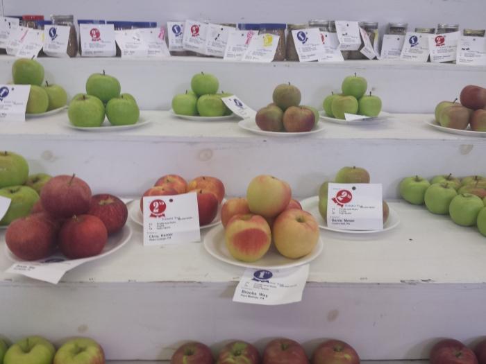 Wie heeft de mooiste appels?