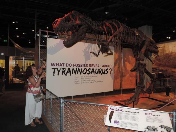 Het skelet van een Tyrannosaurus Rex