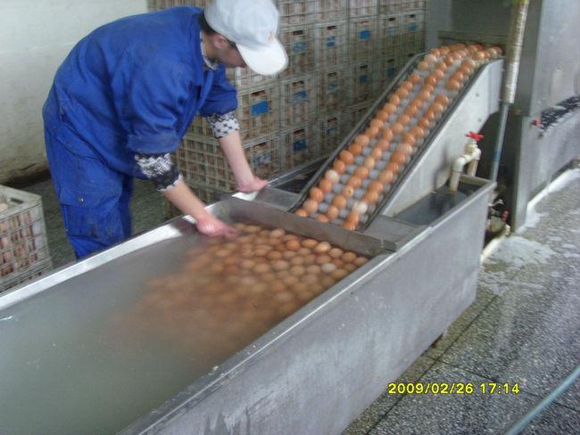 Het wassen van eieren