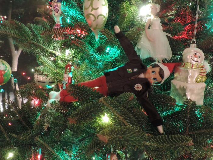 Dit is The Elf on the Shelf, momenteel in de boom