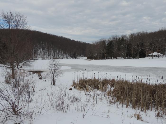 Sneeuw op het Black Moshannon meer