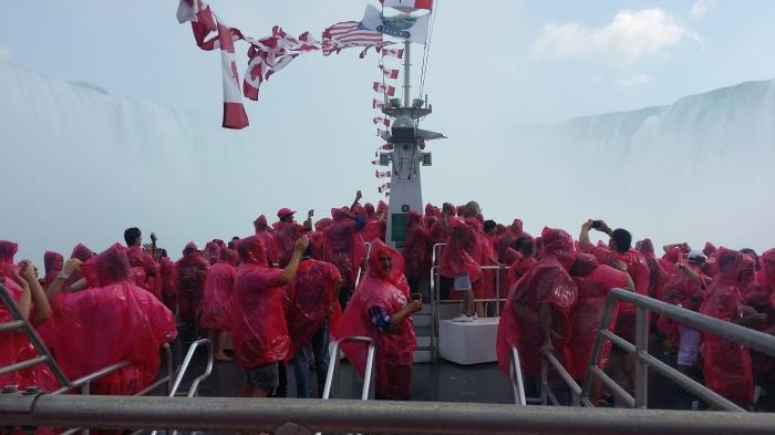 Op de Hornblower boot