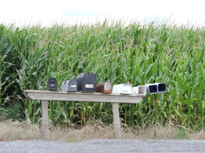 Rijtje brievenbussen op het platteland van Centre County