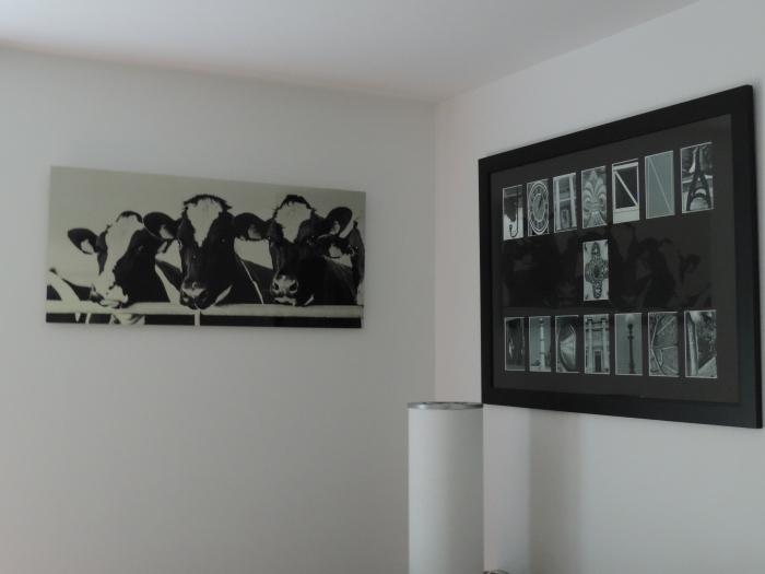 Koeien op een rijtje - op aluminium, in zwart-wit