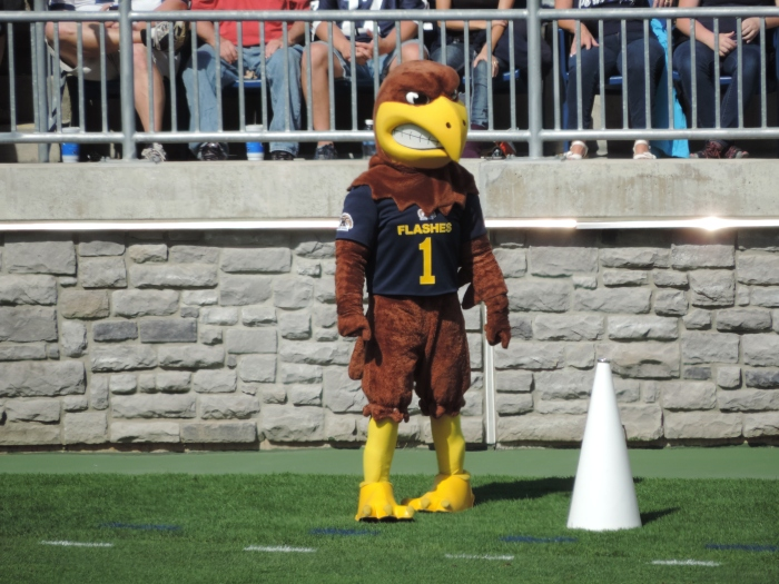 De mascotte van the Golden Flashes: Flash the Golden Eagle