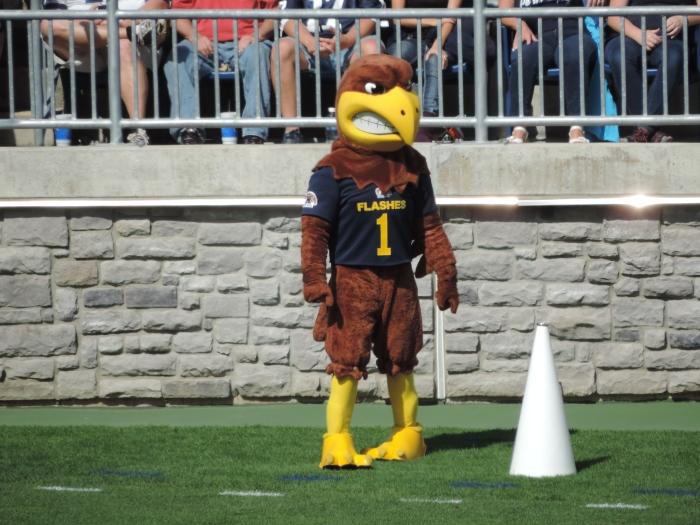 De mascotte van the Golden Flashes: Flash the Golden Eagle