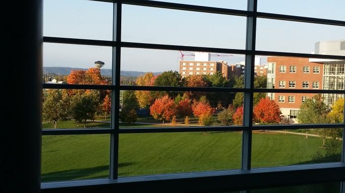 Uitzicht vanuit de business school