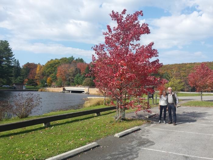 Mooie rode bomen bij Black Moshannon Park